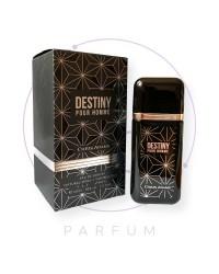 Парфюмерная вода DESTINY Pour Homme by Chris Adams, 100 ml